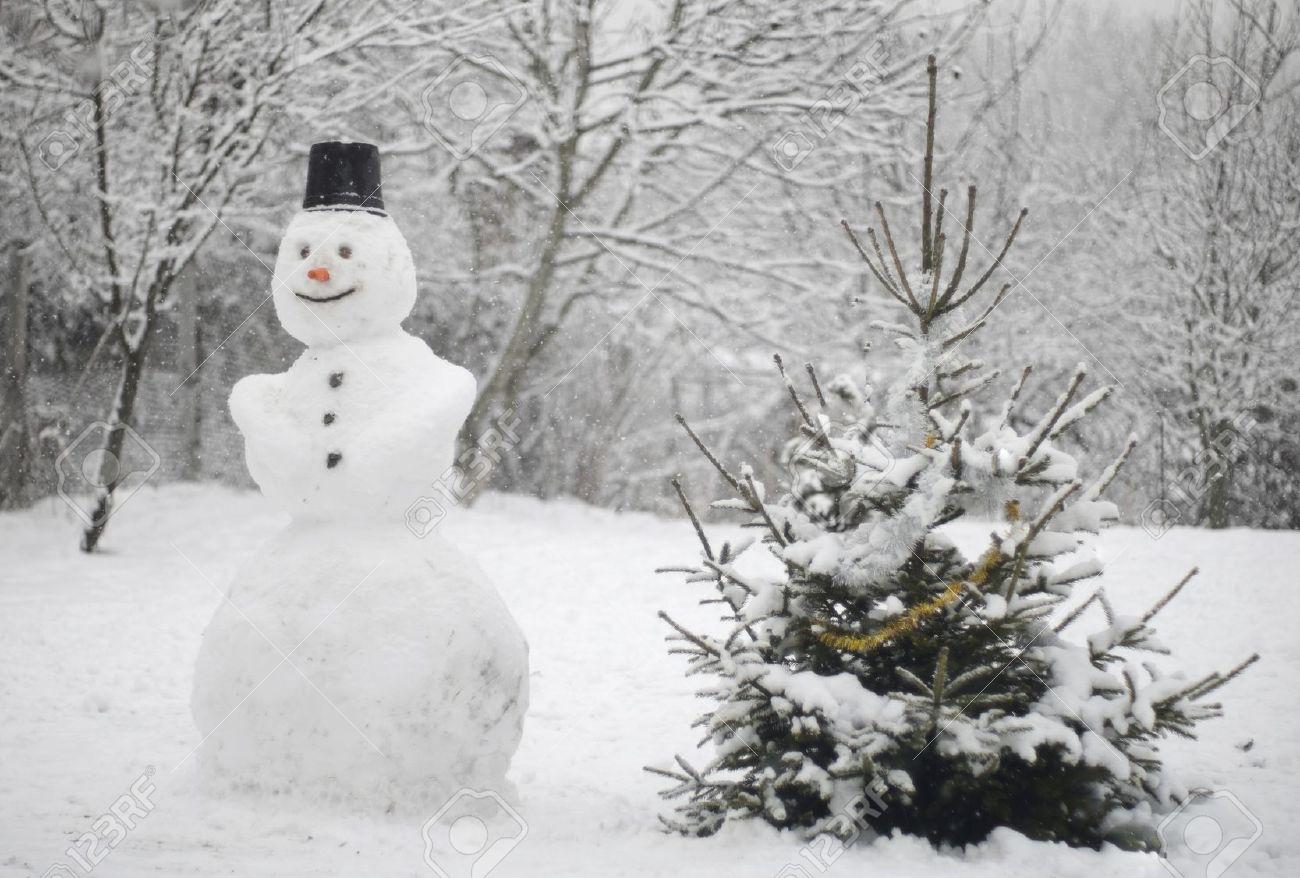 La neve vittoria sacc - La finestra sul cielo mottola ...