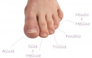 Nomi-dita-piedi-scopri-quali-sono-1024x647